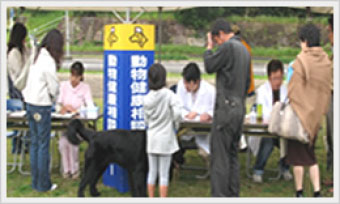 獣医師による動物健康相談